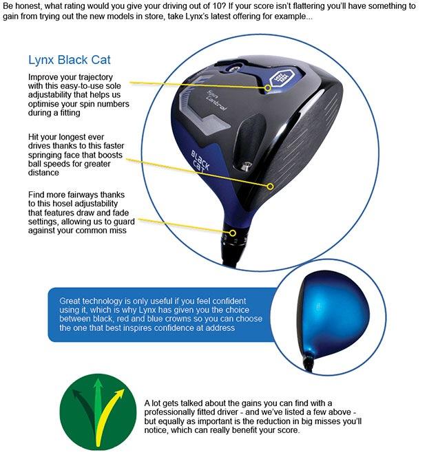 Lynx Black Cat